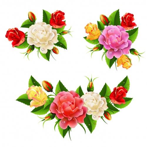 Фоны и красивые цветы в векторе / Color flowers and background in vector