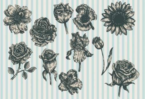 Designtnt - Decorative Flowers Vector Set 1