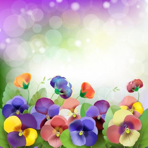 Векторные фоны с цветами, фиалки, бабочки, радуга