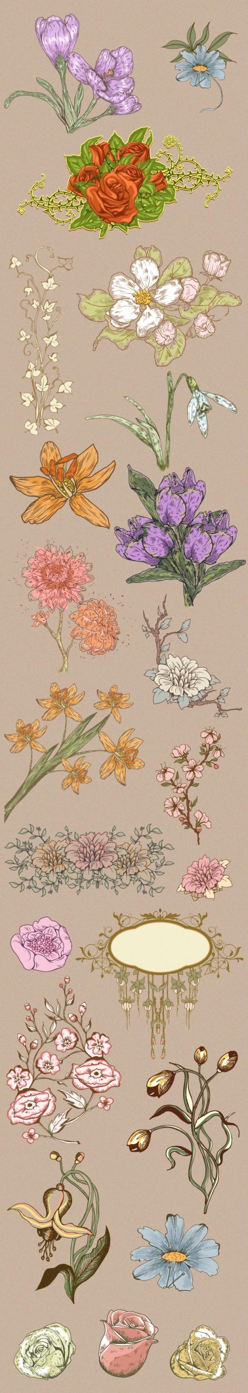 Designtnt - Floral Ornaments Set 3