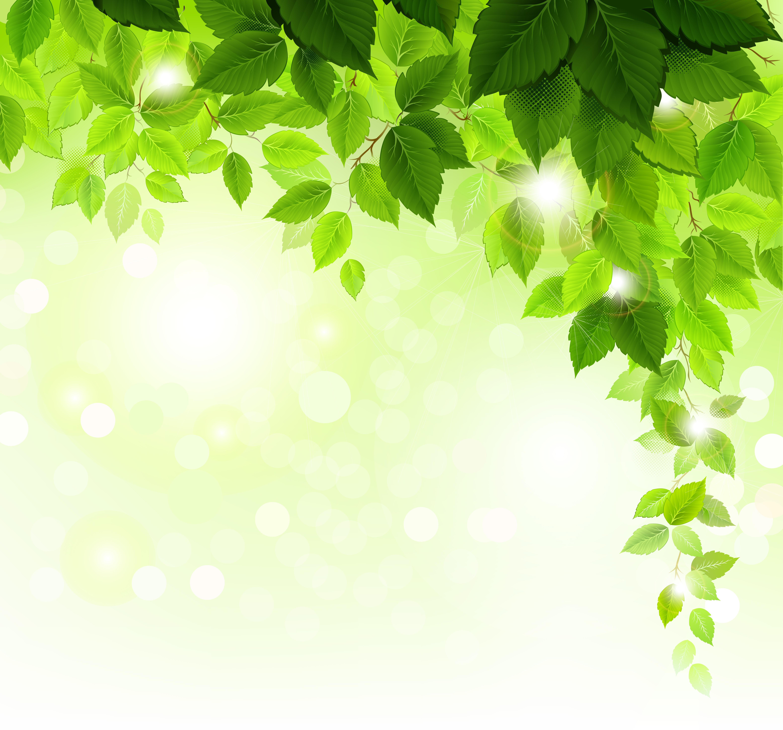 Spring Green Leaves And Flowers Background With Plants: Spring » Страница 5 » Векторные клипарты, текстурные фоны