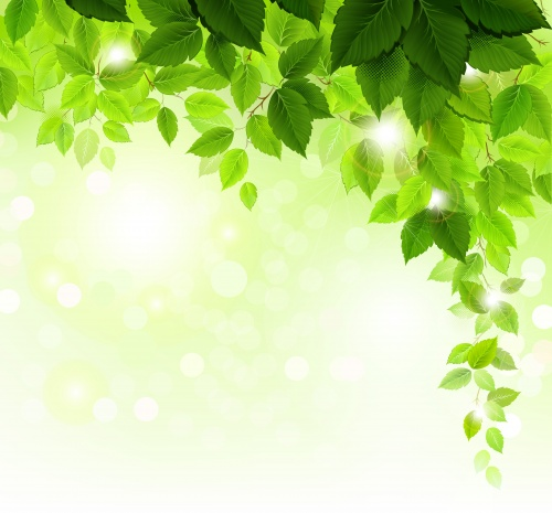 Весенние фоны - Векторный клипарт | Spring backgrounds - Stock Vectors