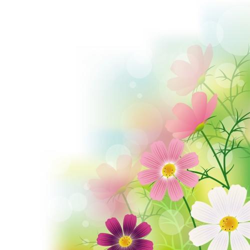 Фон с цветами 18 | Flowers background 18
