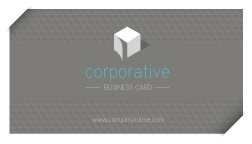 Pixeden - Corporate Business Card Vol 2