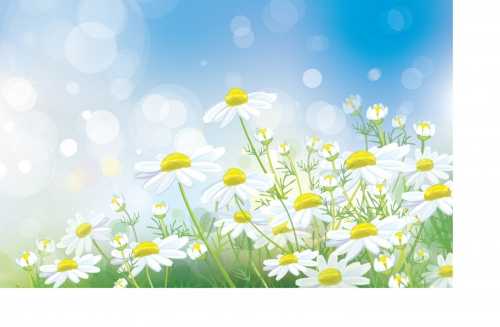 Summer or spring backgrounds and banners
