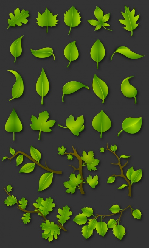 Designtnt - Green Leaves Vector Set 1