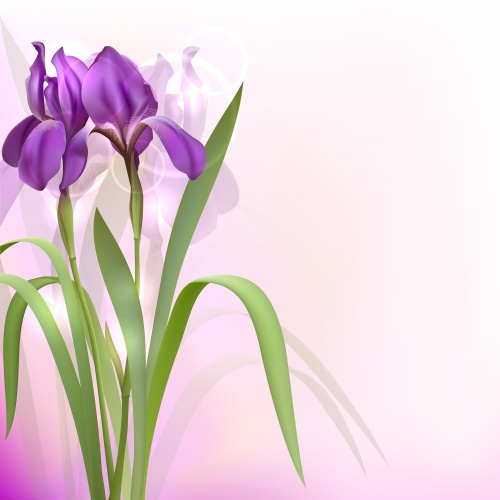 Весенние баннеры с цветами / Set of spring banners with Flowers in vector