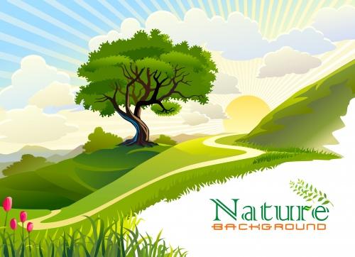 Фоны природы в векторе / Nature background in vector
