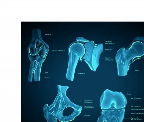 Голубой рентгеновский снимок человека | Blueprint with x-ray vector