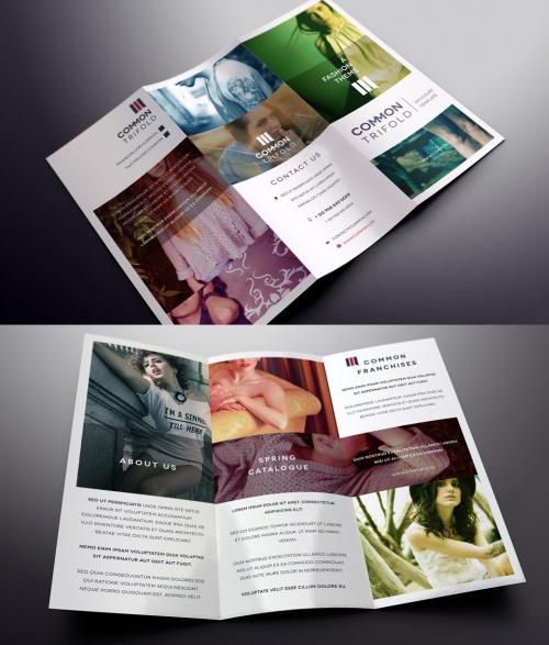 Pixeden - Simple Tri Fold Brochure Template