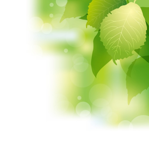Зеленый весенний фон | Green spring background