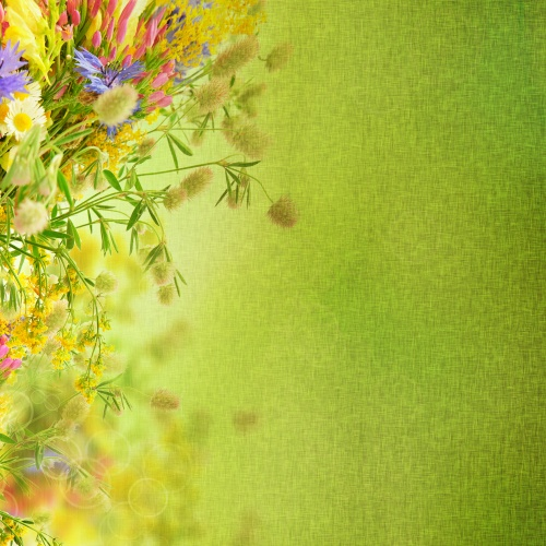 Stock Photo - Vintage Spring Flowers