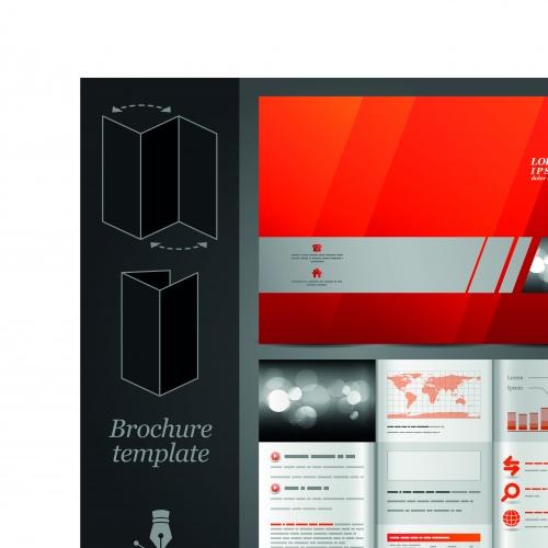 Бизнес брошюра из трёх страниц часть 27 | Tri fold business brochure vector set 27