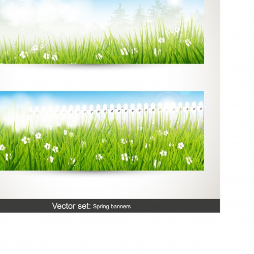 Backgrounds and banners with green grass
