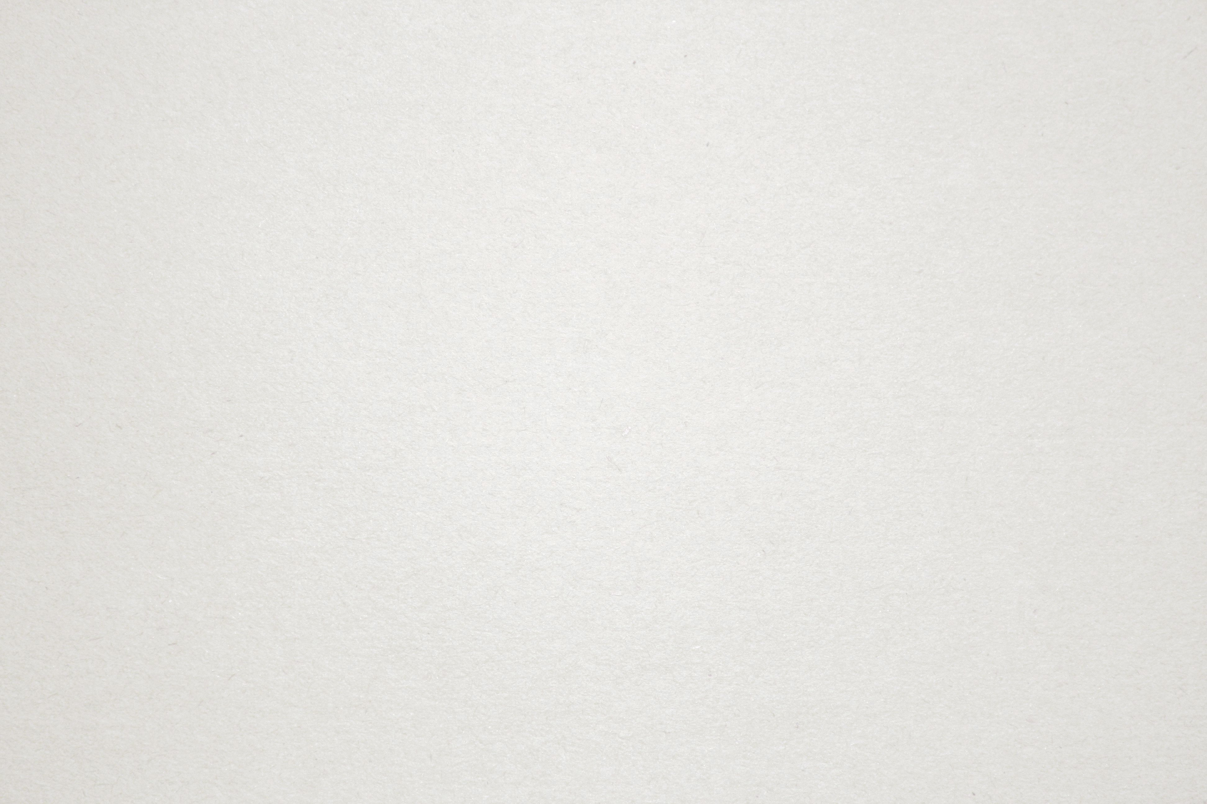 white backdrop paper