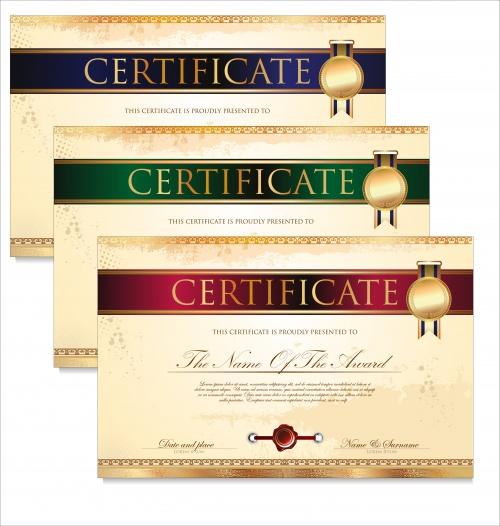 Certificate vector 6