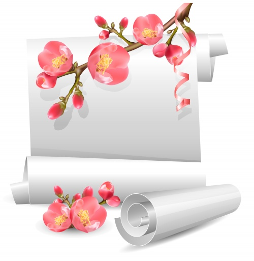 Весенние цветы и свиток в векторе / Vector stock - spring flowers and scroll