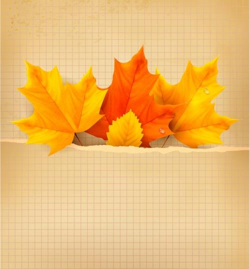 Осенний коллаж, часть 1 / Autumn collage in vector, part 1