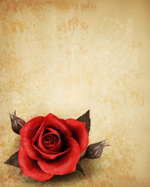Векторные фоны - Винтажные розы