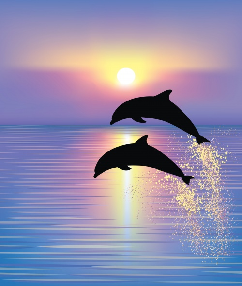 Seascapes and the dolphins - Vector clipart