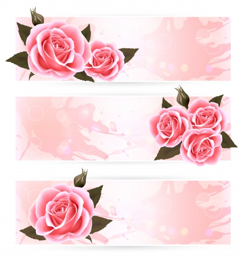 Paper Banners with Roses Vector