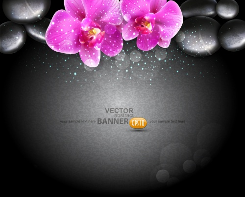 Black Spa Stones & Flowers Vector