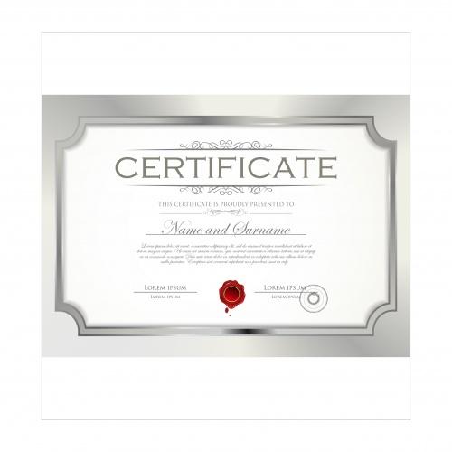 Certificate vector 21