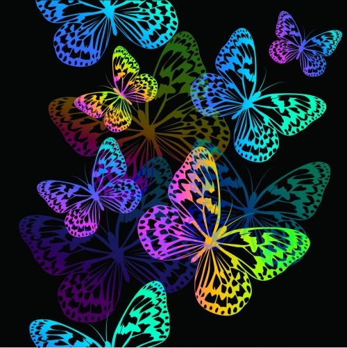 Color Butterflies Backgrounds Vector